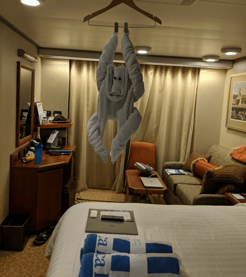 towel animal on cruise ship